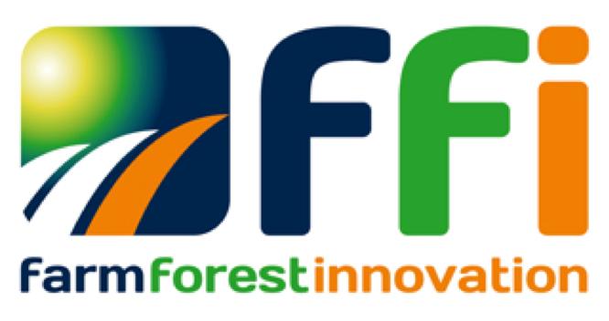 FFI_Logo (1).png