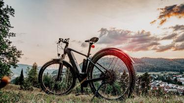 Bild E-Bike Mountainbike