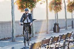 Bild E-Bikes & Fahrräder