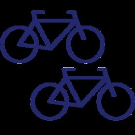 Icon E-Bikes & Fahrräder